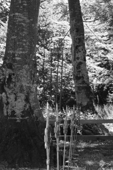 Fotosuche Helden Friedhof