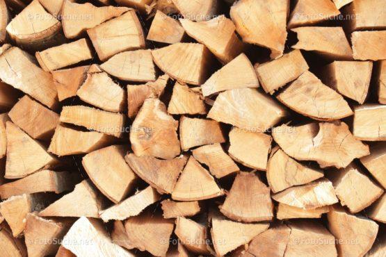 Fotosuche Holz 2