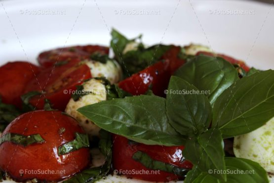 Tomaten Mozzarella Salat Foto kaufen Fotoshop