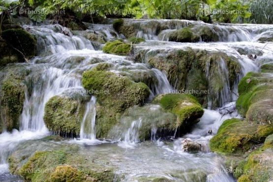 Foto Flussbett Moos | Schönes Foto kaufen | Fotosuchen